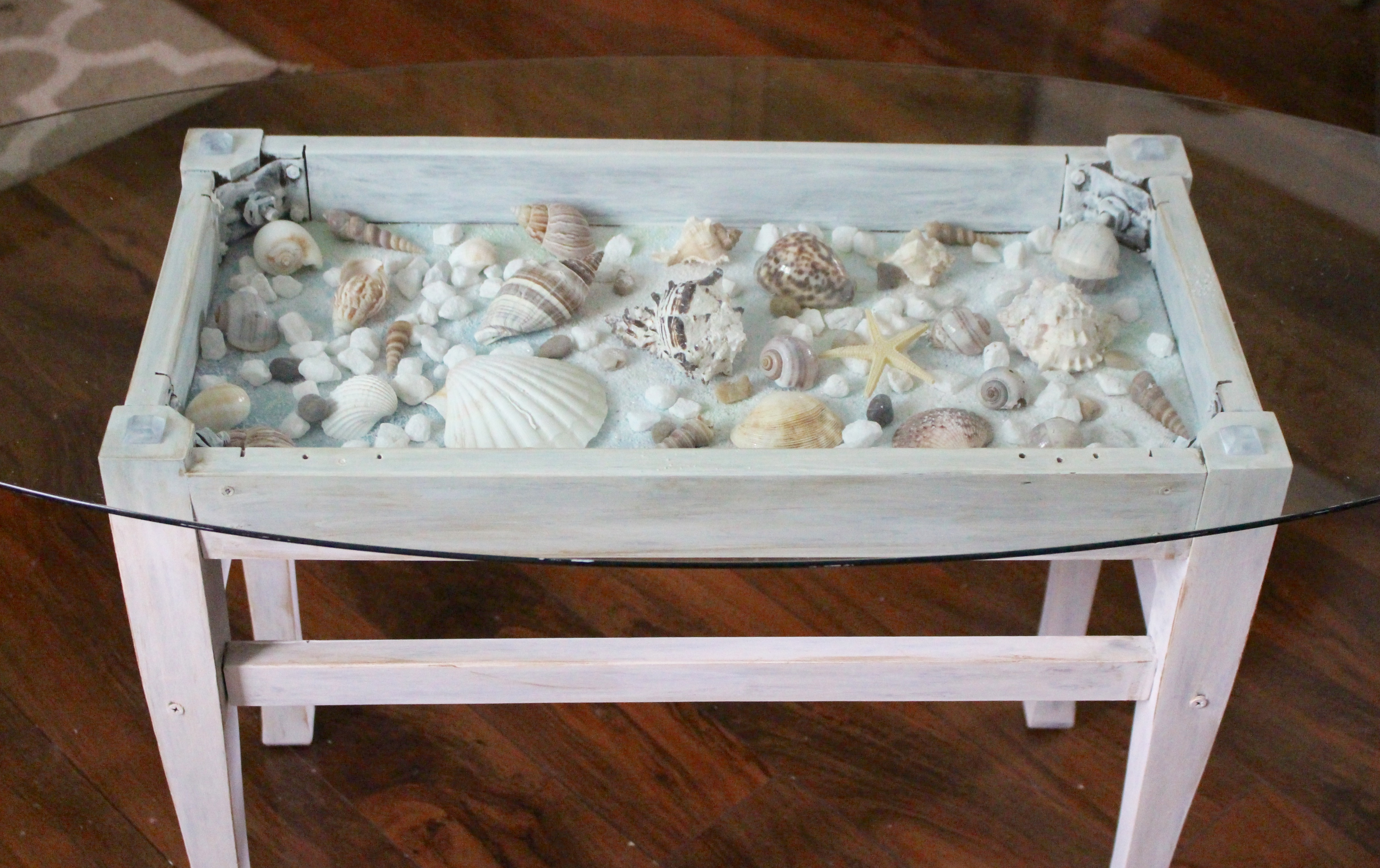 Sea Shell Shadow Box Table Our Crafty Mom