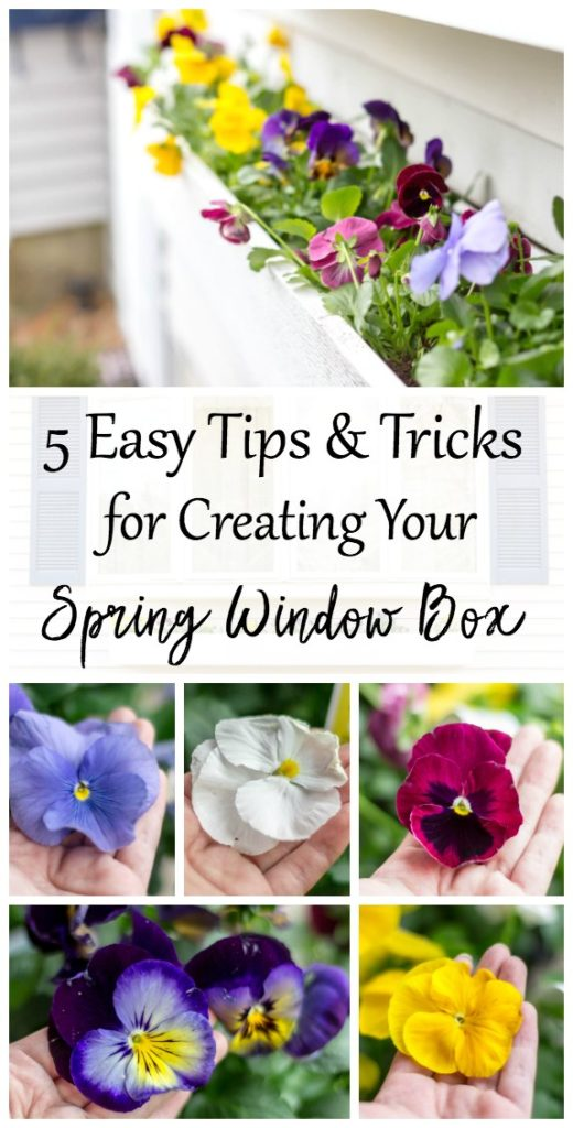 https://www.angiethefreckledrose.com/spring-window-box