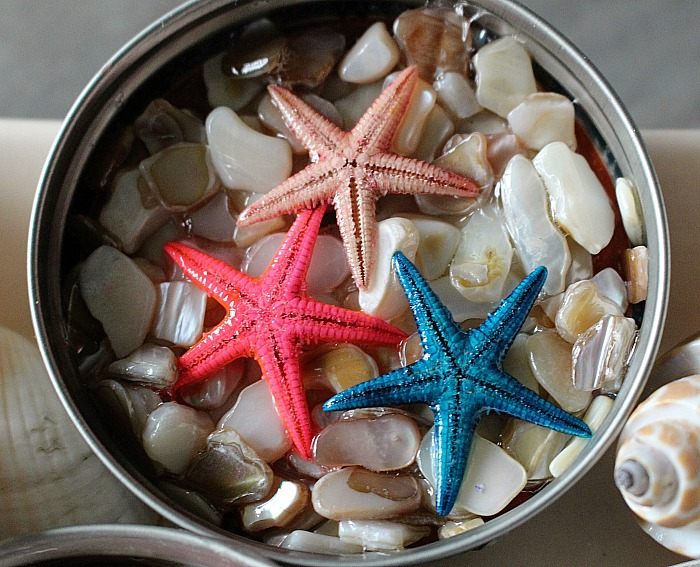 DIY Beach Themed Coasters From Mason Jar Lids Our Crafty Mom 5