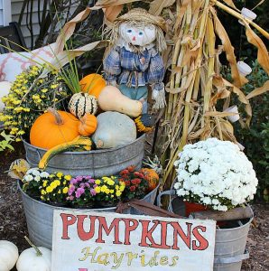 Fall Outdoor Space Blog Hop-Front Entry Decor