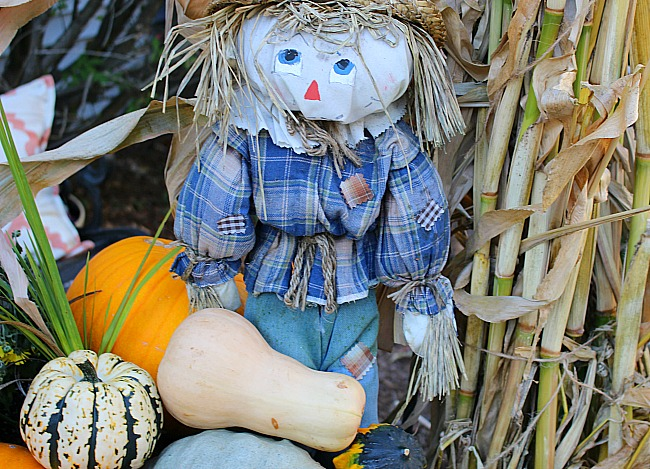 Fall Outdoor Space Blog Hop-Front Entry Decor Our Crafty Mom