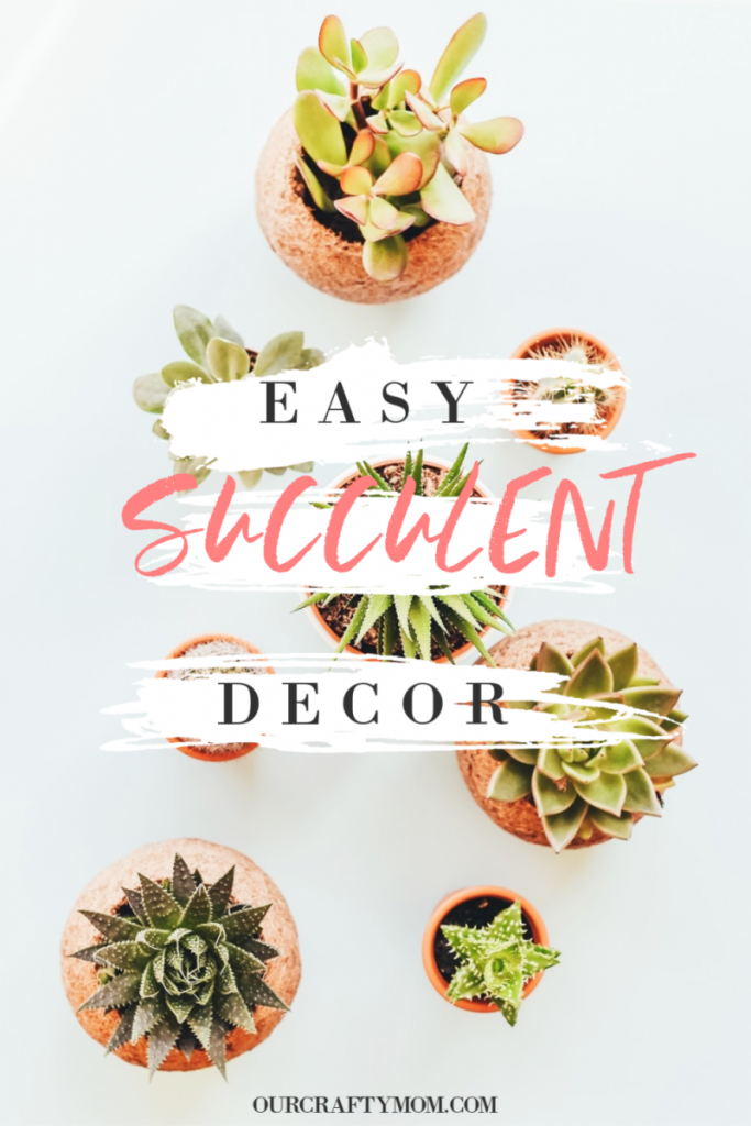 all things succulent pinterest graphic