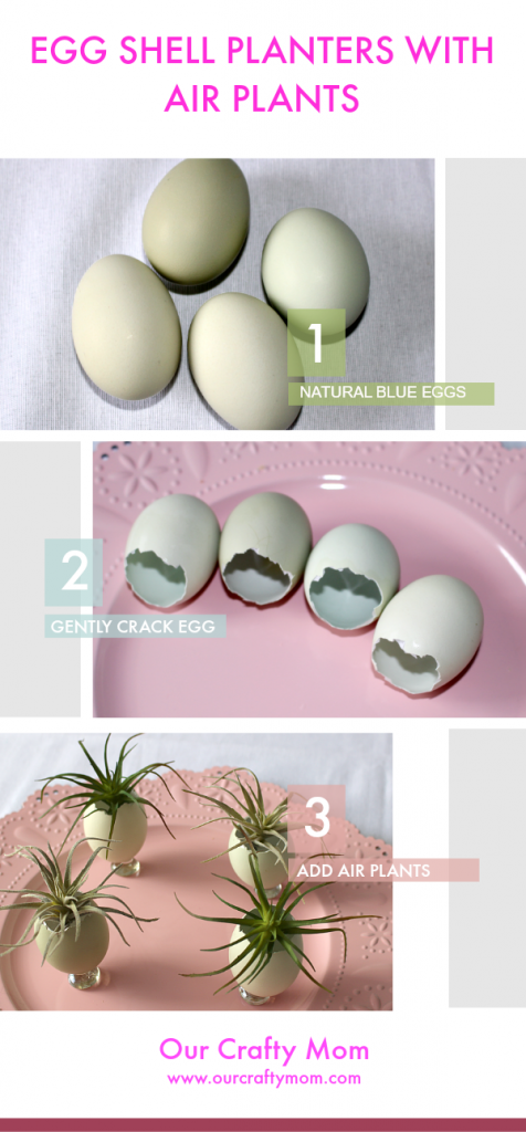 Natural Blue Eggs Used As Planters With Air Plants Our Crafty Mom #airplants #eastereggs #easterplacecards
