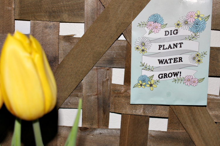 Create A Pretty Farmhouse Spring Vignette With Tulips Our Crafty Mom #spring #tulips