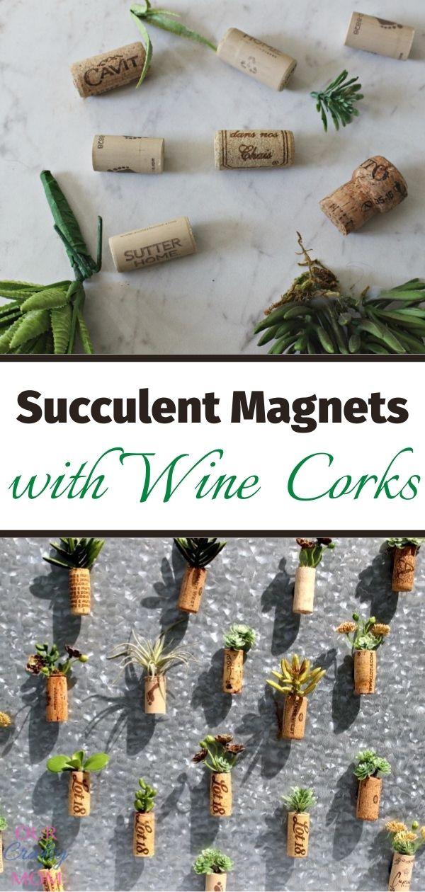 wine cork succulent magnet supplies