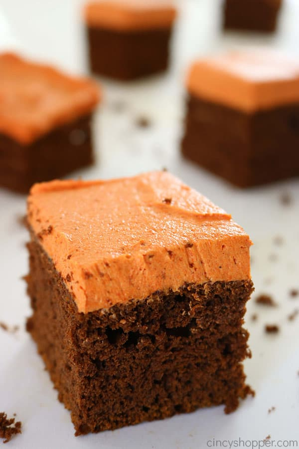 Chocolate-Pumpkin-Cake-3