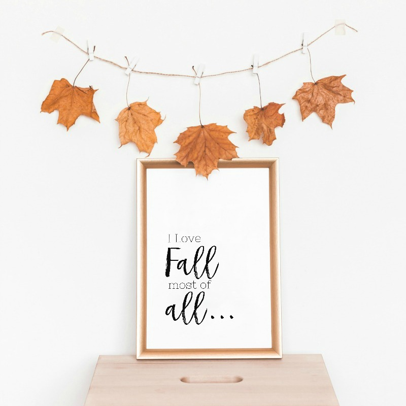 love-fall-most-of-all-square