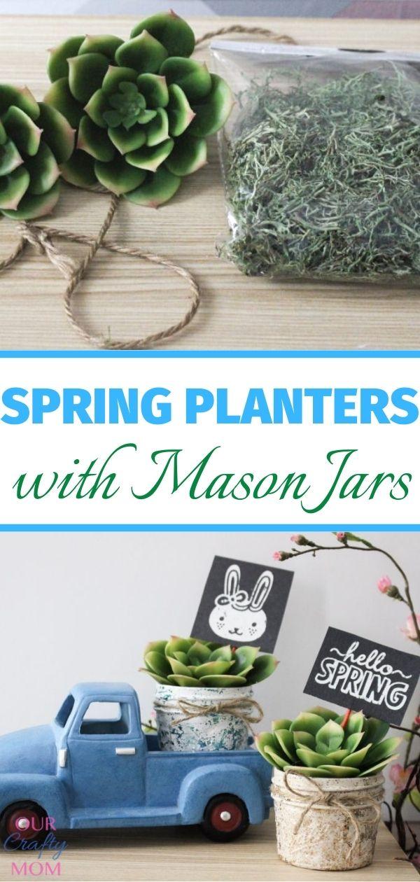 succulents in mini mason jars