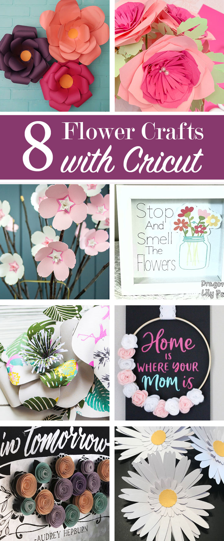 Flowers made with Cricut