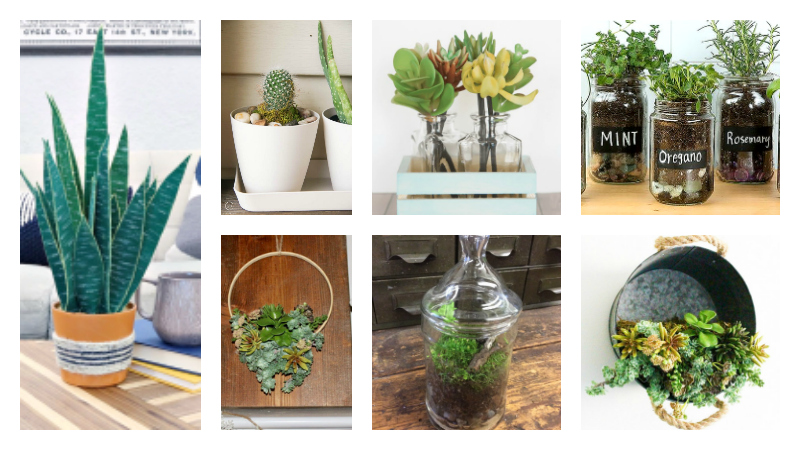 7 diy greenery ideas with planters
