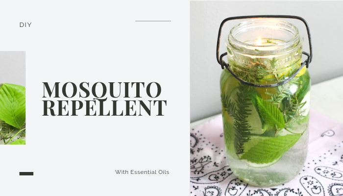 Best Mosquito Repellent Mason Jar Hack With Essential Oils