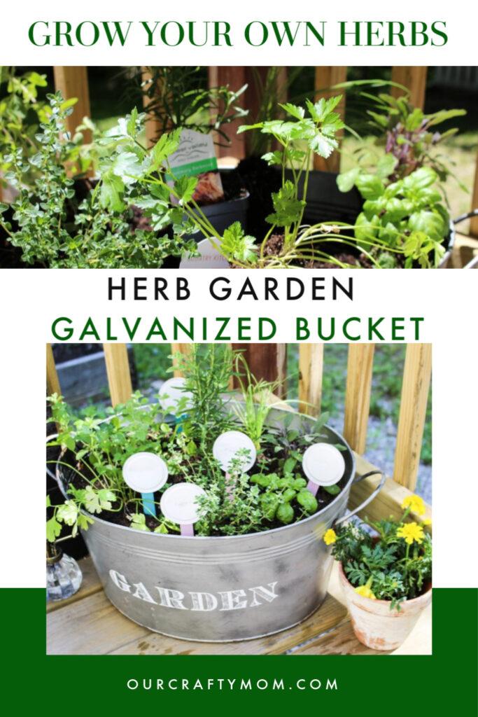 herb garden collage