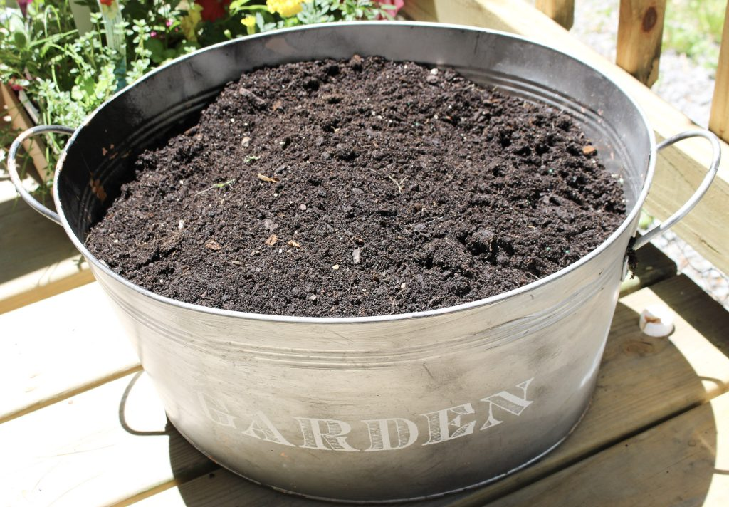 bucket with fresh soil