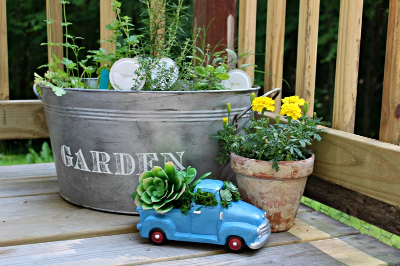 Blue truck with succulents for garden