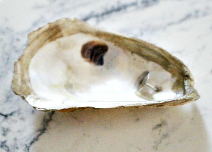 oyster with thumb tack
