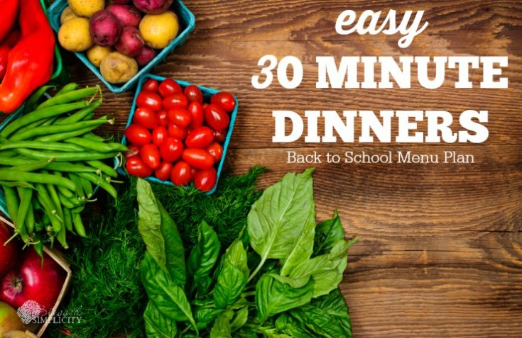 30 Minute Dinners Back to School Menu Plan {Printable}