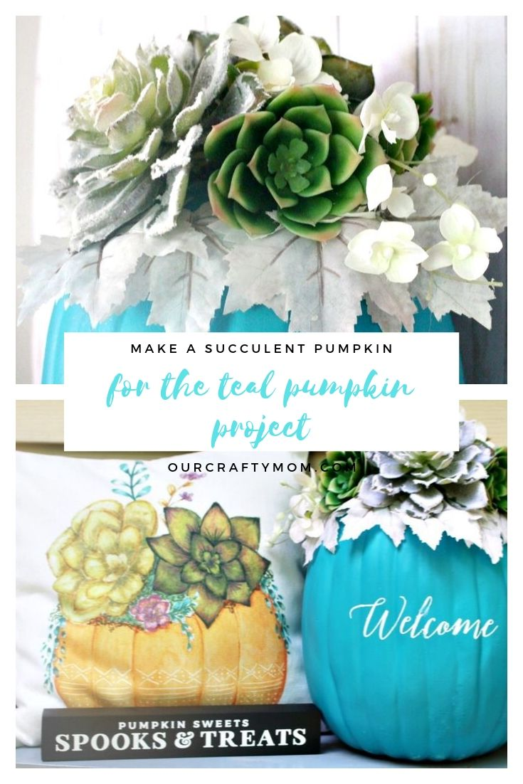 make a succulent pumpkin