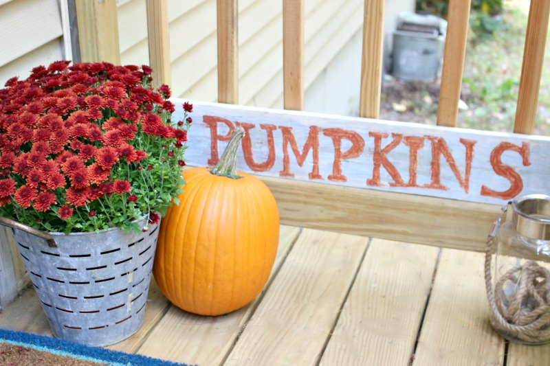 pumpkins sign with mums