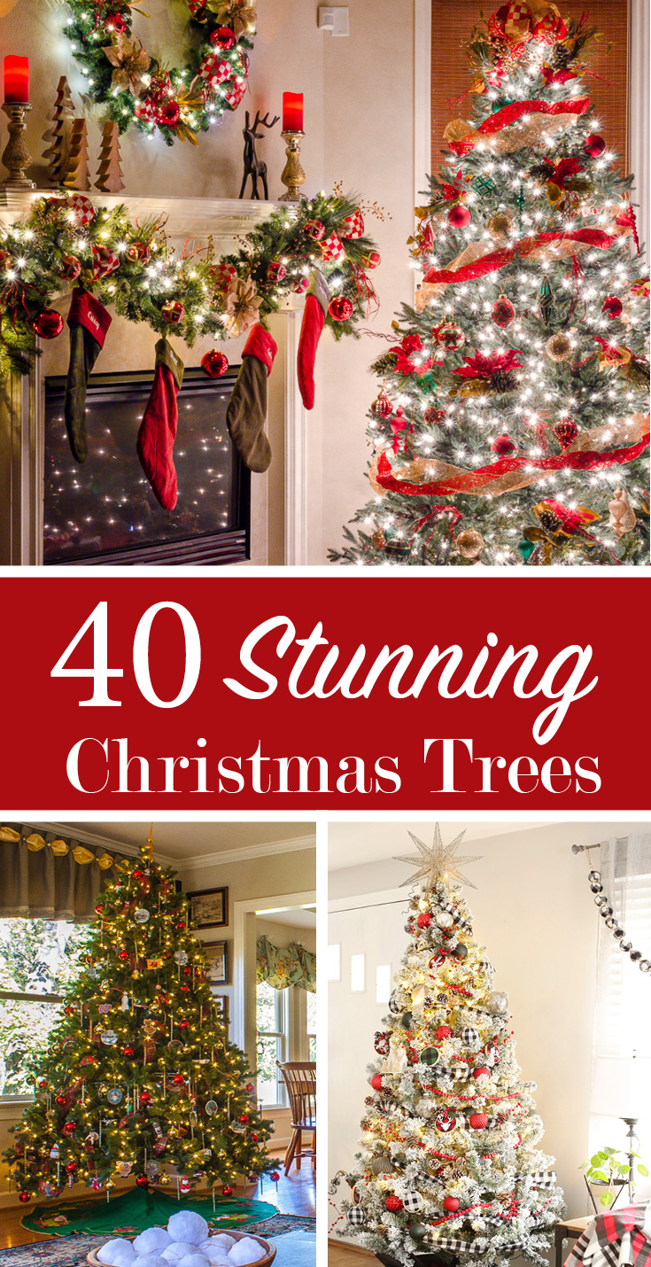40 christmas trees