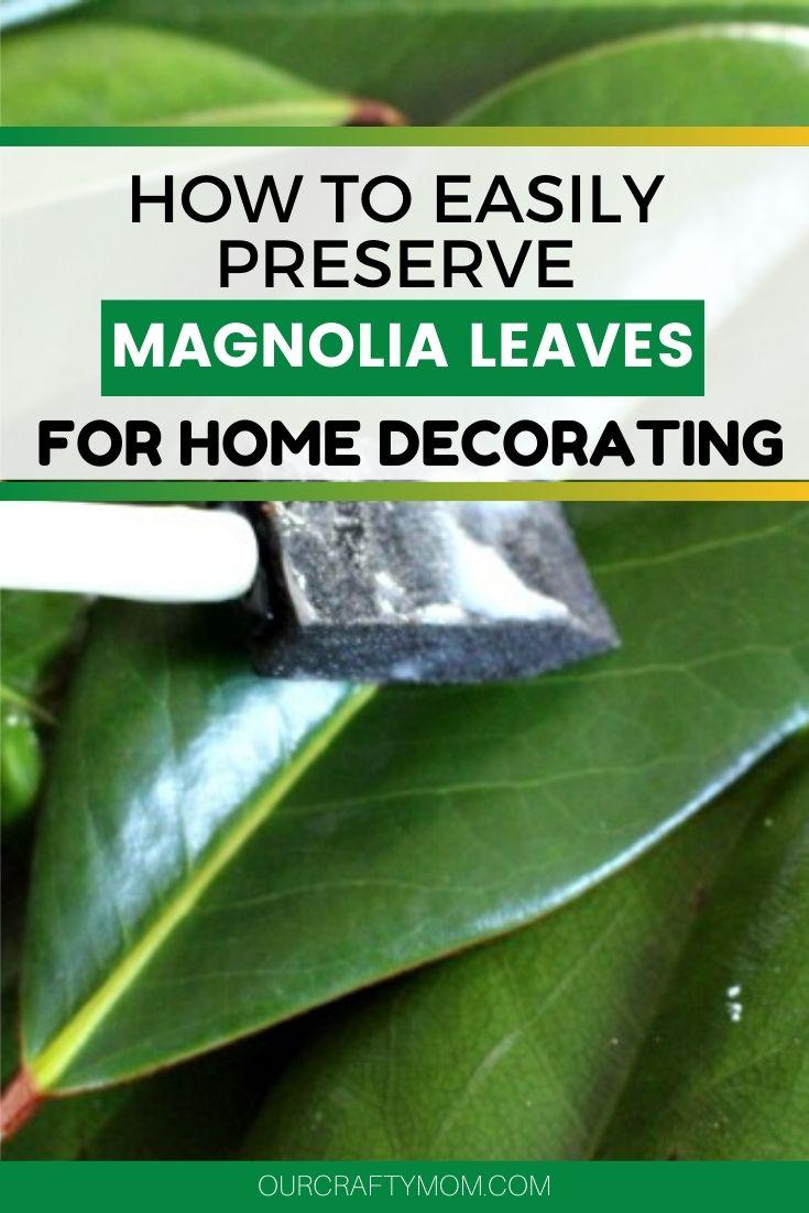mod podge on magnolia leaves