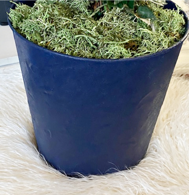 close up of suede paint planter