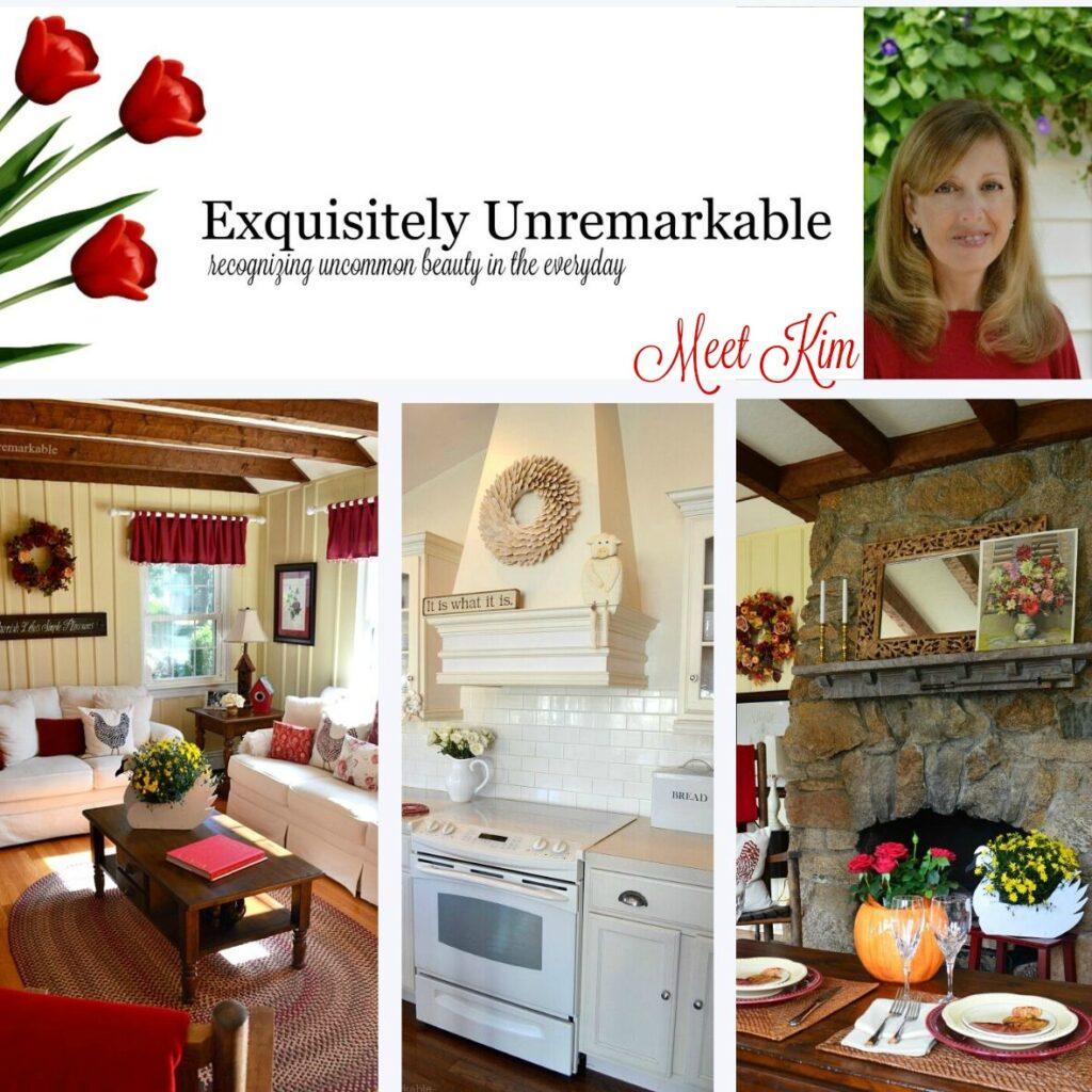 meet Kim Exquisitely Unremarkable