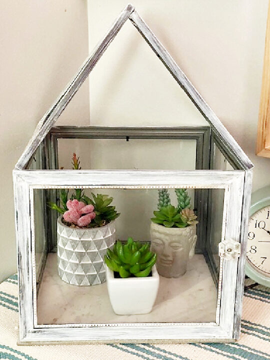 diy terrarium from dollar store frames