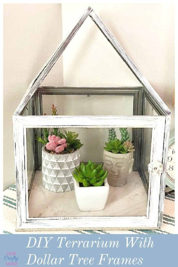 How To Make A Terrarium From Dollar Tree Frames