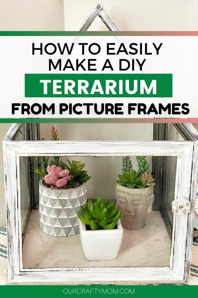 diy terrarium with picture frames
