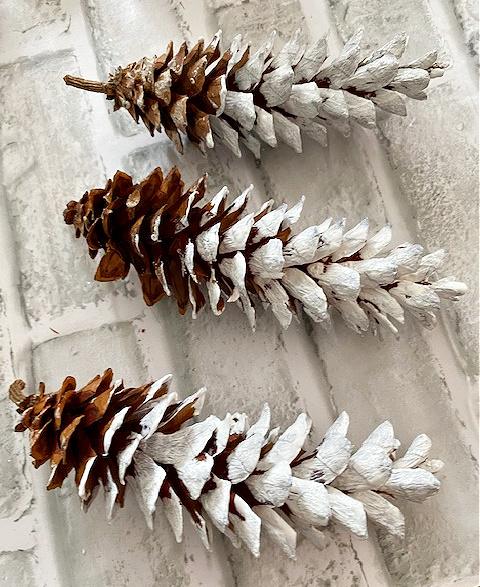 3 painted pine cones