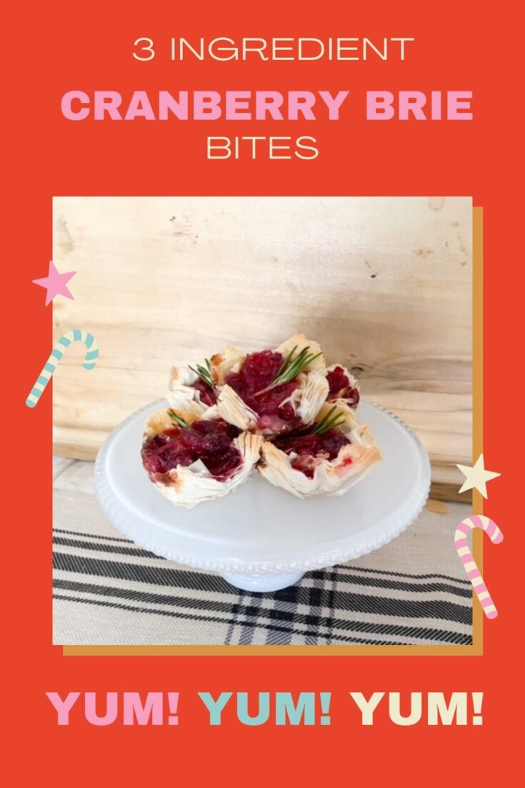 cranberry brie bites with 3 ingredients