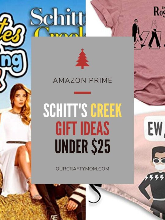SCHITT'S CREEK GIFT IDEAS UNDER $25