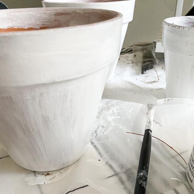 white painted garden pot