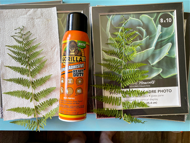 supplies for pressed fern wall art