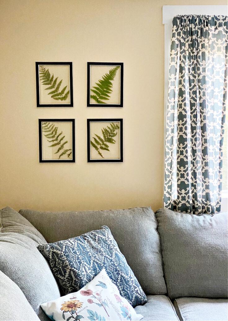 pressed fern wall art diy