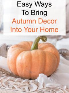orange pumpkin on table pin image
