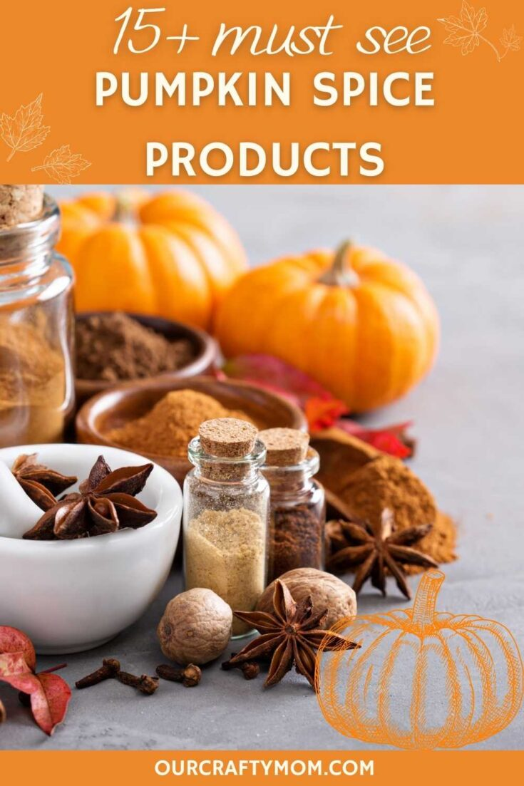 pumpkin spice pin image with text overlay